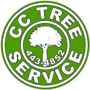 tree service corpus christi tx, tree removal and tree trimming