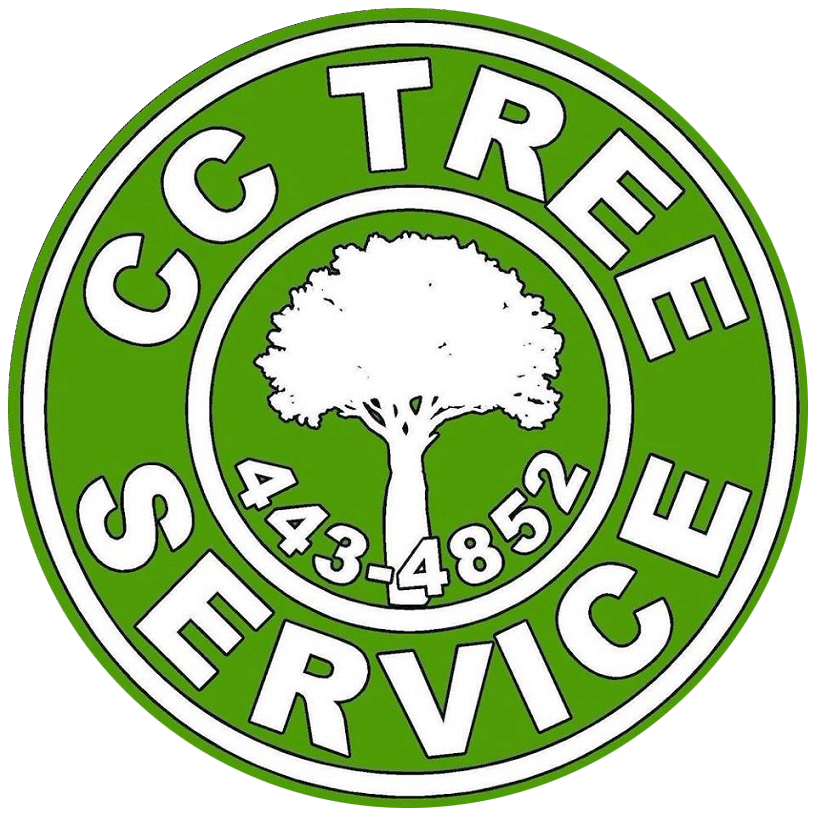 tree service corpus christi and stump grinding