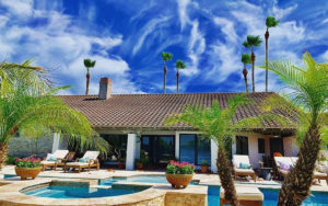 Palm Trees and blue skies CC Tree Service Hero image